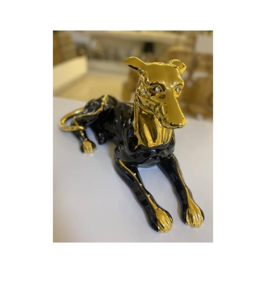 سگ نشسته آب طلا